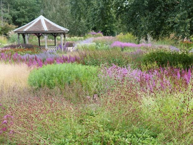 Millenium Garden at Pensthorpe, Norfolk