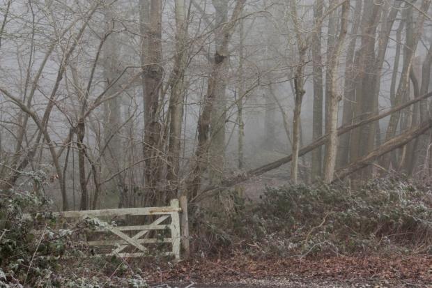 Gate (1024x683)